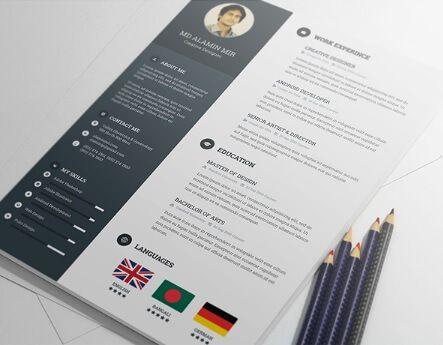 Modelo de Curriculum Vitae 11