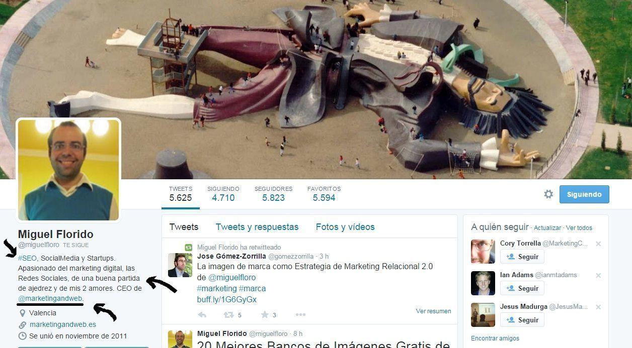 Twitter BIO Ejemplo Hashtag y Link